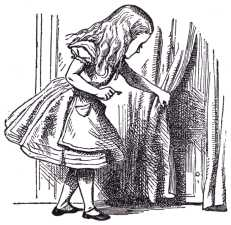 ...she came upon a low curtain she had not noticed before, and behind it was a little door about fifteen inches high...