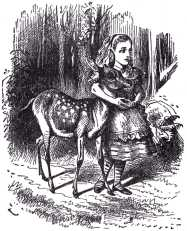 So they walked on together though the wood, Alice with her arms clasped lovingly round the soft neck of the Fawn,...